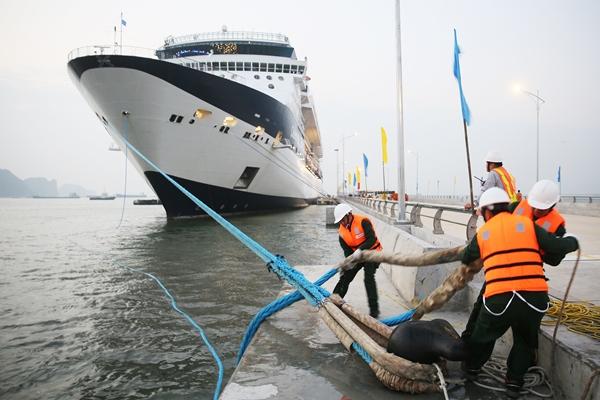 Thao tác neo đậu tàu du lịch.